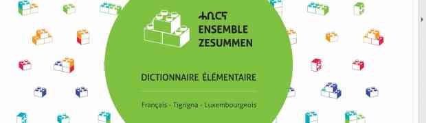 Nouveau Dictionnaire pour dpi